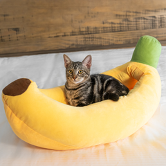 banana shaped cat bed with tabby cat