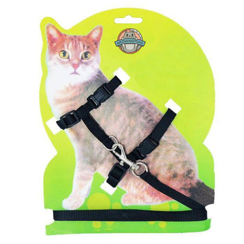 Trailblazer Cat Leash and Harness