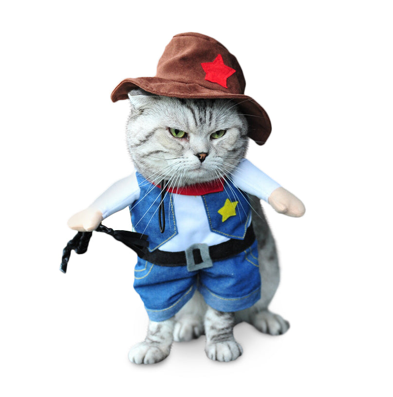 Cowboy Cat Costume  sc 1 st  Meowingtons : cowboy costume  - Germanpascual.Com