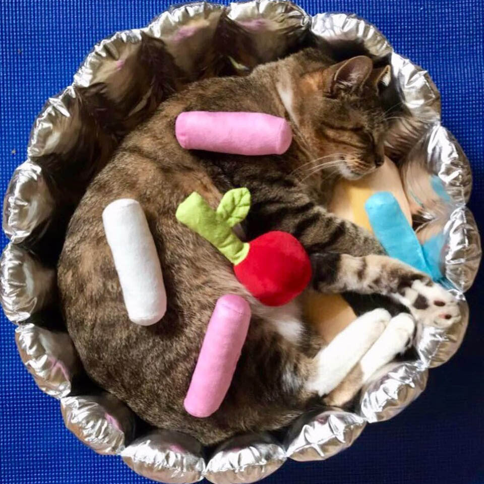cupcake cat bed with sprinkles