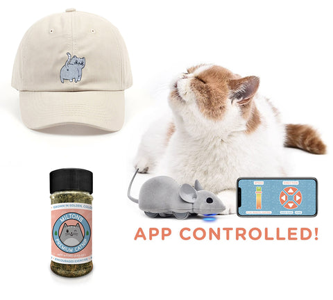 Cat Dad Gift Bundle