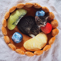 Fruit Tart Cat Bed