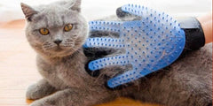 Diva Cat Grooming Glove