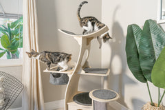 Jungle Gym Cat Tree 2.0
