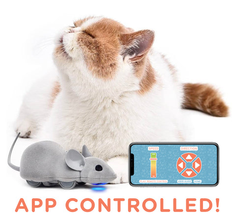 Mouse Hunt Cat Toy, App Controlled