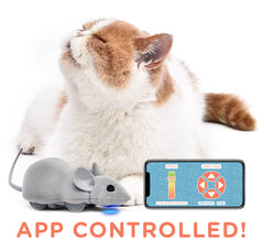 Mouse Hunt Cat Toy App Controlled