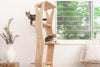 ideal cat tower for cats that enjoy climbing