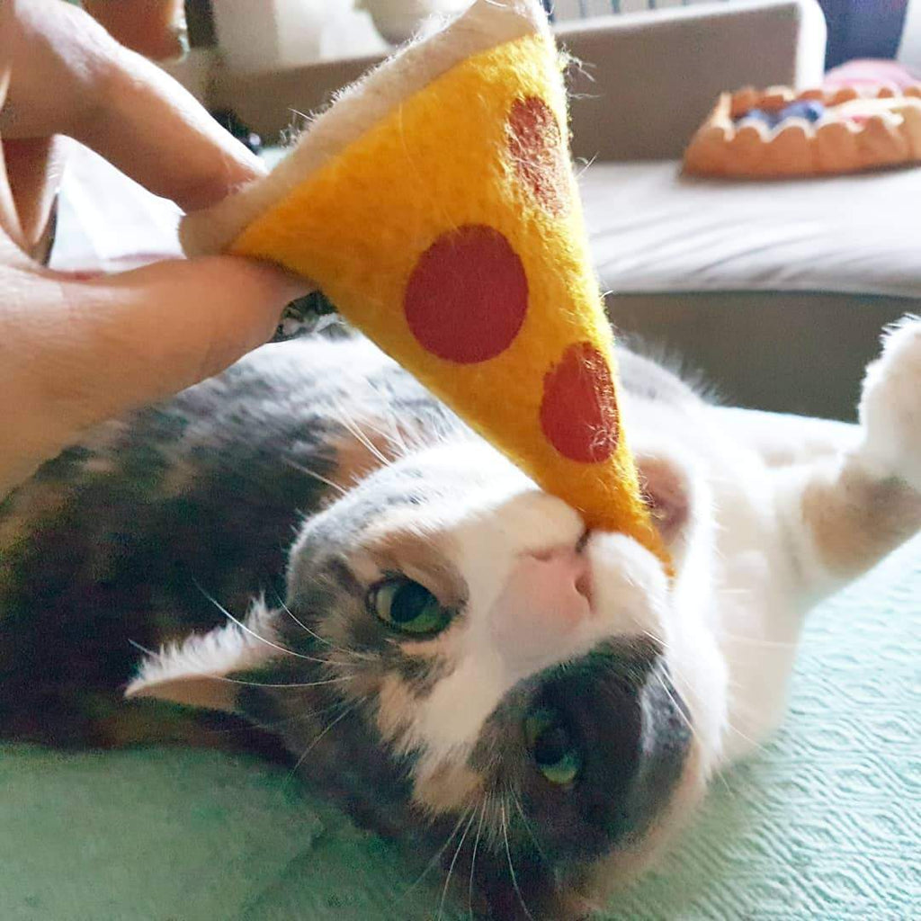 Refillable Peppurroni Pizza Catnip Toy
