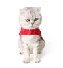 Santa Paws Cat Costume
