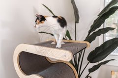 Modern Wave Cat Tree