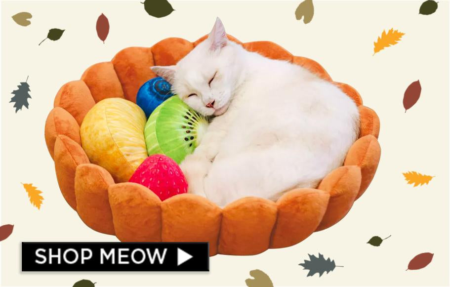 Meowingtons - Cat Themed Apparel, Accessories, Earrings