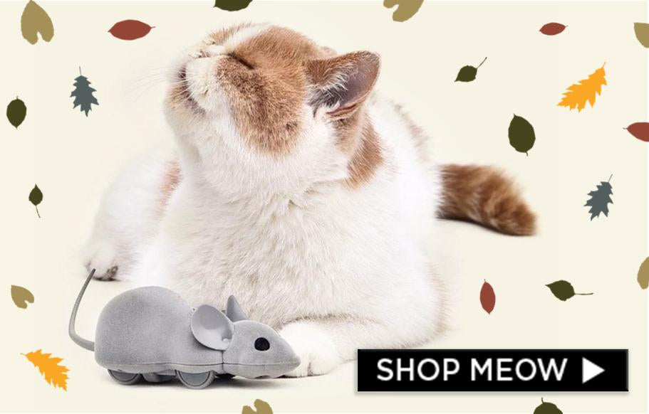 c147055e14 Meowingtons - Cat Themed Apparel, Accessories, Earrings, Home Decore