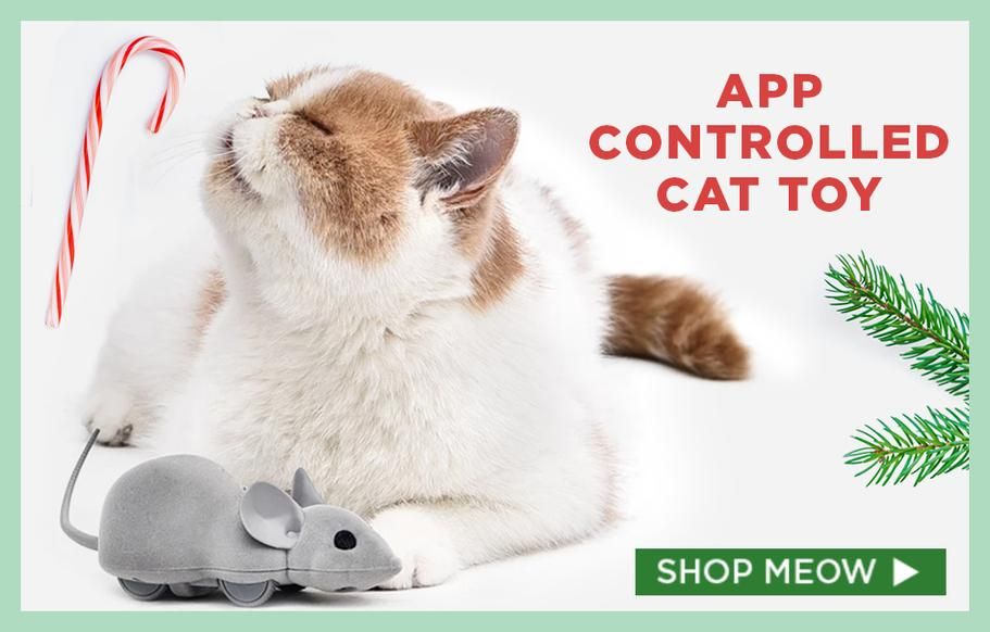 App-Controlled Mouse Hunt Cat Toy