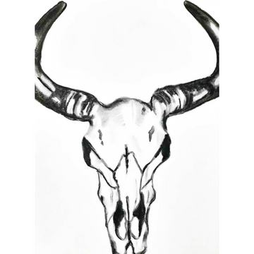 'Charcoal Steer Skull' DIY Drawing Kit