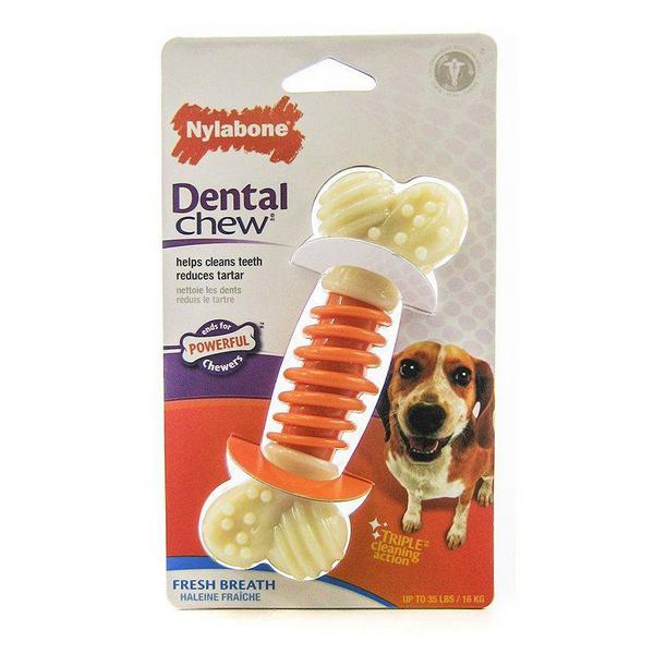 "Nylabone Pro Action Dental Chew - Fresh Breath - Medium - 5"" Long - Giftscircle"