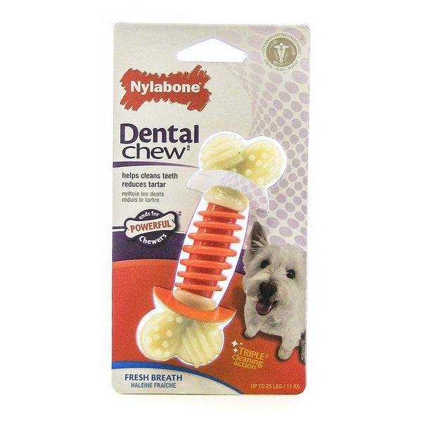 "Nylabone Pro Action Dental Chew - Fresh Breath - Small - 4"" Long - Giftscircle"