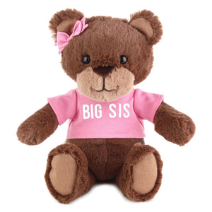 Big Sis Teddy Bear Stuffed Animal
