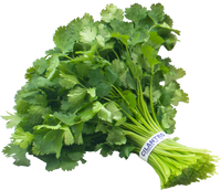 Cilantro 1 for $0.39 (OR) 3 for $1