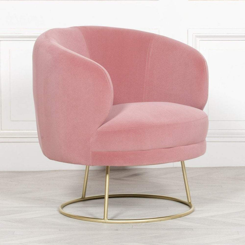 Cotton Candy Pink Velvet Armchair With Gold Legs - The Decor Brand