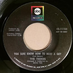 The Trends ‎– You Sure Know How To Hurt A Guy / Not Another Day