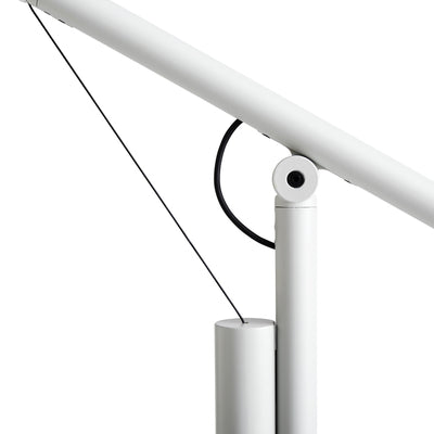 Fifty Fifty Floor Lamp