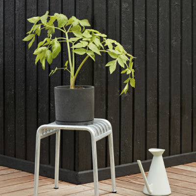 Plant Pot With Saucer (NEW ARRIVAL)