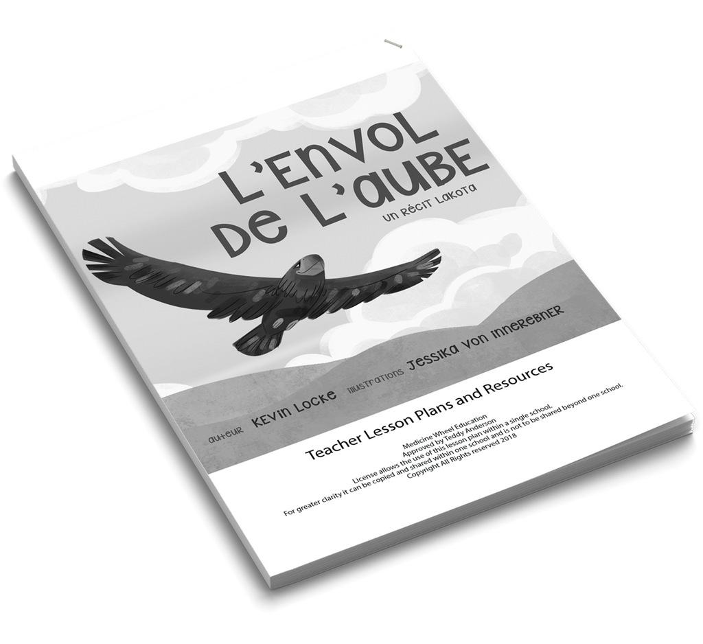 Lesson Plans (French) – Dawn Flight