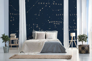 Blue starry night bedroom wall mural