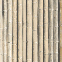 Bamboo Beige Wallpaper