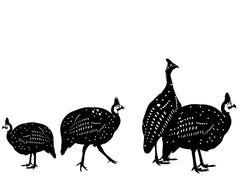 Guinea fowl vinyl wall stickers