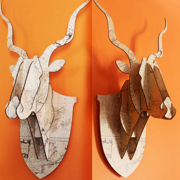 3D Kudu Head - Patterned