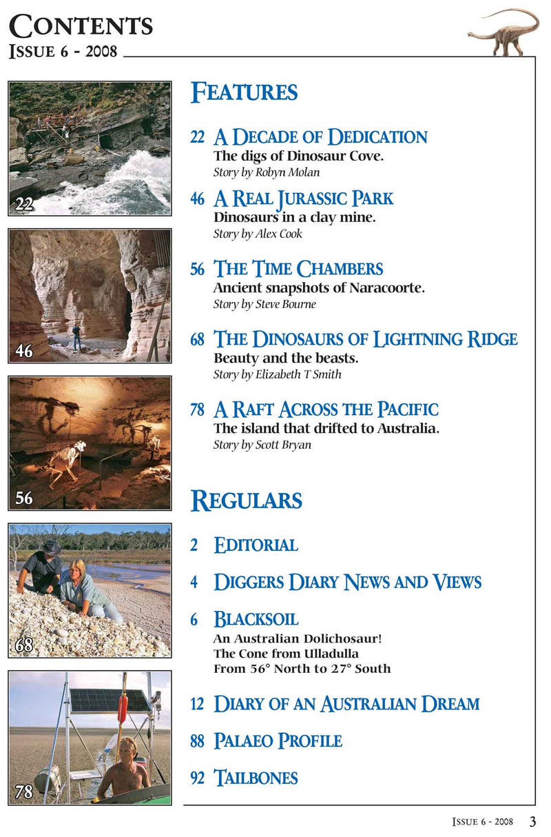 AAOD Journal, Issue 6 (2008)