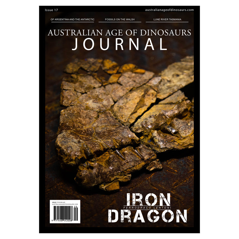 AAOD Journal, Issue 17 (2020)