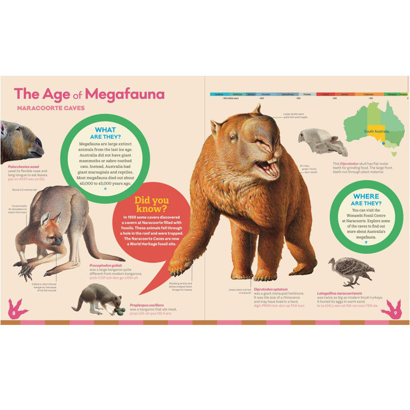 From Dinosaurs to Diprotodons: Australia's amazing fossils