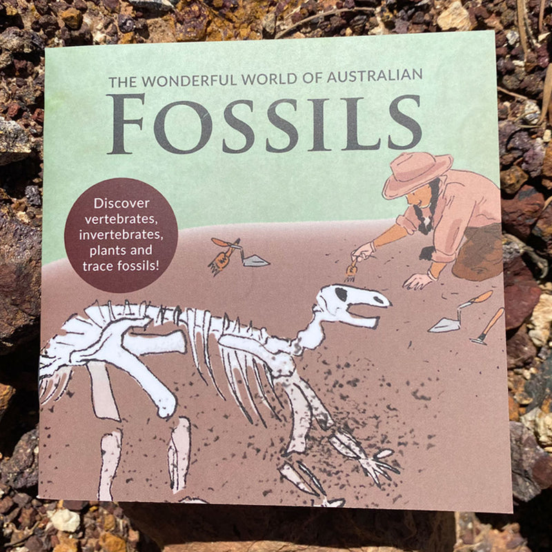 The Wonderful World of Australian Fossils