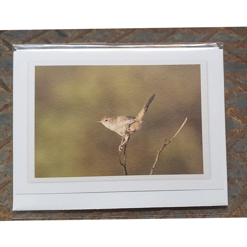 Native bird notecards (Buy any three cards and save 20%)