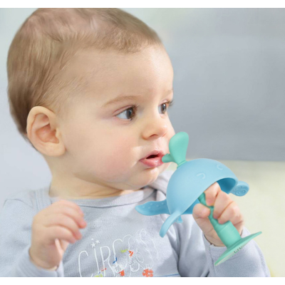 Molar Teething toy