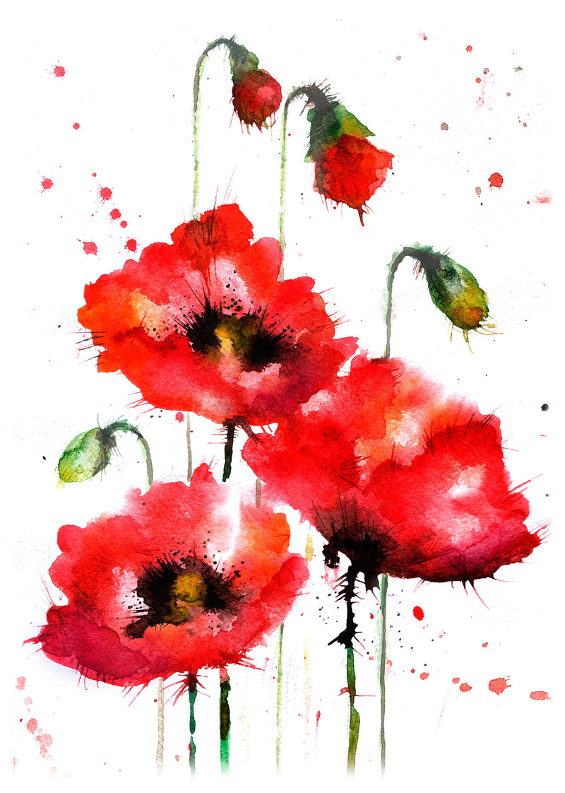 The Poppies.