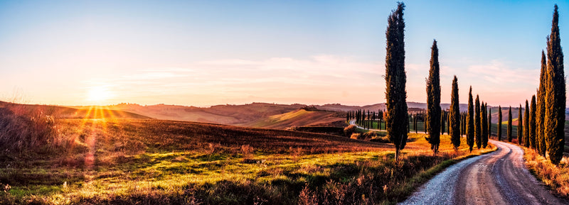 Toscana at the Sunset.