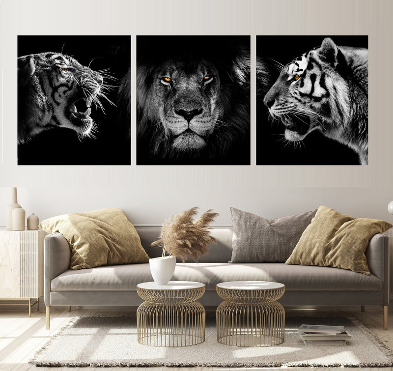 Tiger vs. Lion als Triptychon.