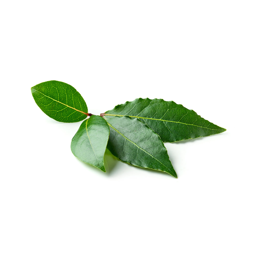 Bay Leaves 1packet
