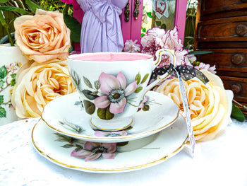 Paragon Teacup Trio set - Pompadour 'Wild Rose'