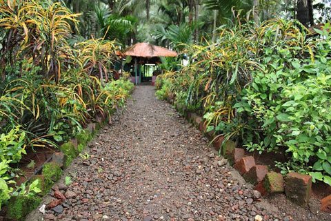 Cottage Stay at Kolad Among Plantations