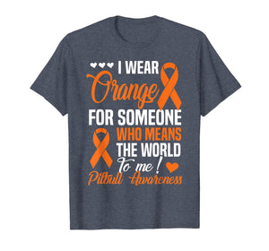 Orange For Someone Who Means World To Me - Pitbull Awareness T-Shirt