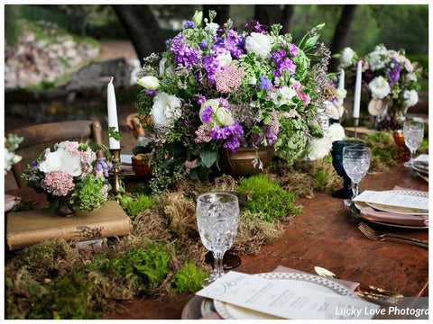 woodsy wedding venues, forest wedding venues, nature themed wedding venues, boho wedding venues, best locations for outdoor weddings, unique forest wedding locations