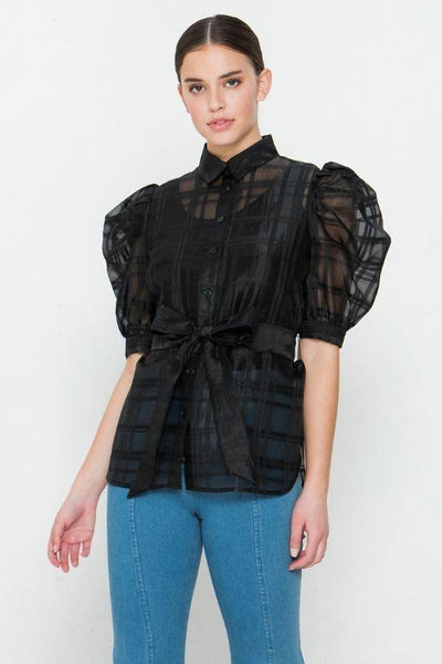 Yushikas Boutique A See-thru Mini Length Organza Top