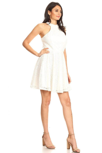 Yushikas Boutique Lace Sleeveless Dress With Halter Neckline And Back Zipper Closure
