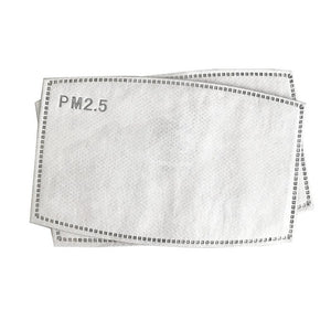 5 Layers PM2.5 Filter(1, 2, 10 or 20 pcs) - FruGear