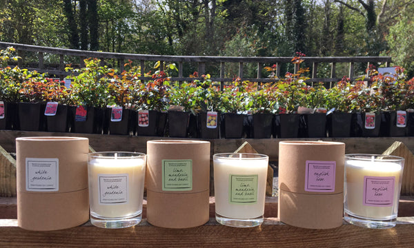 Environmentally Friendly Candles - Candles by Northumbrian Candleworks