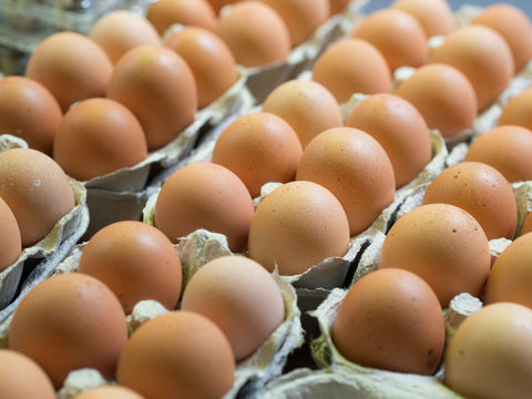 Organic Free Range Eggs Medium